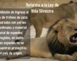 Proyecto Frente Amplio: Contra el tráfico de trofeos de caza.
