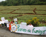 Proyecto Frente Amplio: Impuesto a la caja de piña