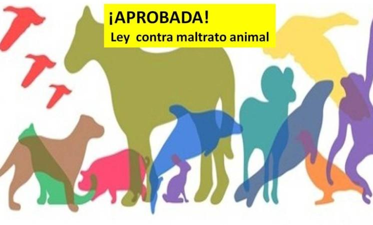 Aprobada Ley contra maltrato animal