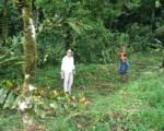 Acompañamos importantes proyectos en Guatuso.