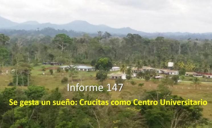 Informe semanal de labores 147