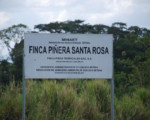 MINAE suspende viabilidad ambiental a piñera