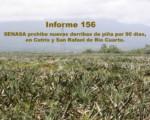 Informe semanal de labores 156.